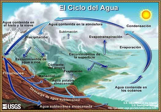 EL AGUA,CICLO Y CARACTERISTICAS